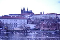 Prag-Flussschloss Stockbilder
