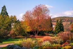 Prag-Herbst im botanischen Garten lizenzfreie stockfotografie