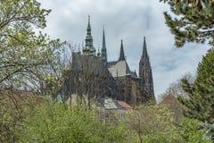 Prag-Kathedrale von St. Vitus, Wenceslas und Adalbert stockfotos
