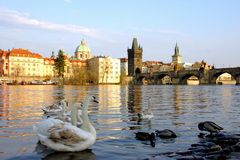 Praga al tramonto Immagine Stock Libera da Diritti