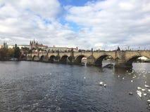 Praga - Charles foto de stock royalty free