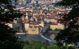 Praga nel telaio naturale fatto dalle foglie - repubblica Ceca Fotografia Stock Libera da Diritti