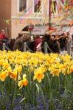 PRAGA, REPÚBLICA CHECA - 15 DE ABRIL DE 2017: Narcisos amarelos na praça da cidade velha na Páscoa Imagens de Stock Royalty Free