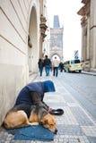 Praga, República Checa, 5o Em maio de 2011: Mendigo com cão fotografia de stock royalty free
