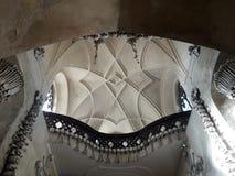 Praga rzeka odnawił gothic ossuary tkaczów statuy deathes zdjęcie royalty free
