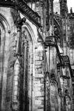 Praga St Vitus Cathedrale 06 Zdjęcia Royalty Free