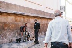 Praga, Wrzesień 29, 2017: Policjant opowiada bezdomna osoba lub sprawdza jego dokumenty Zdjęcie Royalty Free