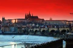 Prague. City of Czech Republic at night Stock Image