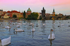 Prague Architecture and St. Charles Bridge in Czech Republic Stock Photography