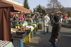 Prague autumn farmers markets Stock Images