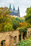 Prague autumn landscape with saint vitus cathedral Royalty Free Stock Photo
