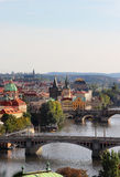Prague broar Royaltyfria Bilder