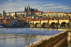 Prague Castel with St. Vitus Cathedral, Moldau, Lesser Town, Prague,  Czech Republic Royalty Free Stock Image