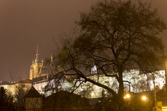 Prague Castle buildings and St. Vitus Cathedral at night in winter behind a tree Stock Photo