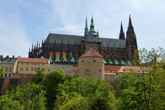 Prague Castle and Cathedral of saint Vitus in Prague, Czech Repu Stock Photography