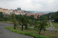 Prague castle with gardens Stock Images