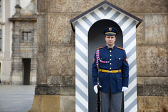 Prague castle guard Stock Image