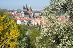 Prague castle from Petrin, Prague, Czech republic. Prague castle and Mala Strana from Seminarska Garden in Prague, Czech republic Stock Photography