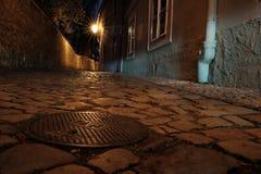 Prague Castle - New World Royalty Free Stock Image