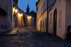 Prague Castle - New World Royalty Free Stock Images