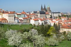 Prague castle from Petrin, Prague, Czech republic. Prague castle and Mala Strana from Seminarska Garden in Prague, Czech republic Stock Photos