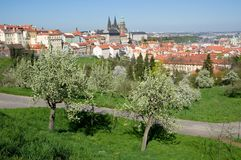 Prague castle from Petrin, Prague, Czech republic. Prague castle and Mala Strana from Seminarska Garden in Prague, Czech republic Royalty Free Stock Image
