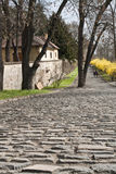 Prague Castle. Royal Garden. Old pavement. Royal Garden in spring. Old pavement. The garden was created in 1535 for Ferdinand I. Its appearance has been altered Royalty Free Stock Photos