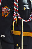 Prague Castle - Royal Guard. This is detail of cloth Prague Castle guards with czech symbol Royalty Free Stock Photography