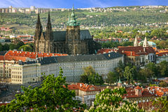 Prague Castle and Saint Vitus Cathedral, Czech Republic. Panoram Stock Images
