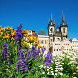 Prague, Church of Mary before Tyn in flowers Stock Photos