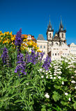 Prague, Church of Mary before Tyn in flowers Royalty Free Stock Photos
