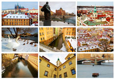 Prague collage Arkivfoton