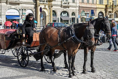 PRAGUE, CZECH REPUBLIC/EUROPE - SEPTEMBER 24 : Horse and carriag. E in the Old Town Square in Prague on September 24, 2014. Unidentified people Stock Photos
