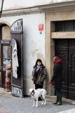 Prague, Czech Republic, January 2015. Scene from the modern life of the old city, a woman and a bulldog. Scene from the modern life of the old city, a woman and stock photo