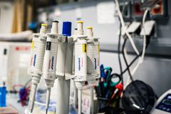 Eppendorf pippetes in a stand. Prague, Czech republic - October 5 2018: Pippetes in a stand stock images