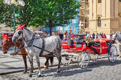 PRAGUE, CZECH REPUBLIC-SEPTEMBER 12, 2015 Horses with coach in. Prague on street, people, cetral part of the Czech capital. Czech Republic Royalty Free Stock Photos