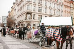 Prague, December 13, 2016: Christmas in Prague. Horses with carts and coachman are waiting for tourists in the main Stock Photo