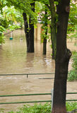Prague flood June 2013 Stock Photos