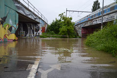 Prague floods Stock Images