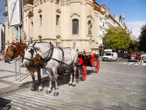 Prague, Horse Carriage Tour Royalty Free Stock Image