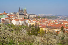 Prague hradcany castle Royalty Free Stock Photography