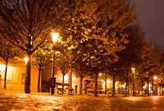 Prague park at night Stock Image