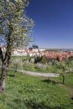Prague and Prague castle vertical view Stock Images