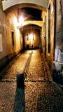 Prague Pruchodni gata arkivbilder