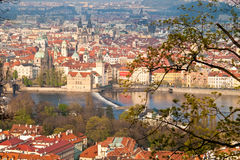 prague redtak Royaltyfria Foton
