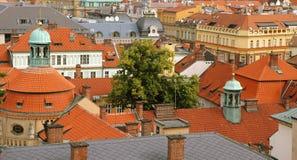 prague roofs treen Royaltyfria Bilder