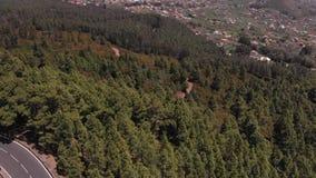 prague s f?r f?gelf?gel?ga sikt Kameran går ner - på en barrskog och en härlig väg i bergen, längs vilka bilar arkivfilmer