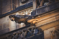Prague Saint Vitus Cathedral Gargoyle Statues Stock Photo