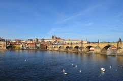 Prague slott 4 arkivbild