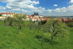Prague in spring Royalty Free Stock Photo